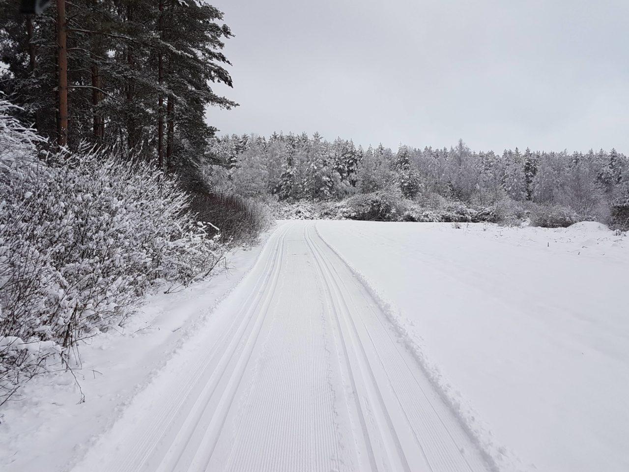 Wszystkie narciarskie trasy biegowe w Nowym Targu są już czynne
