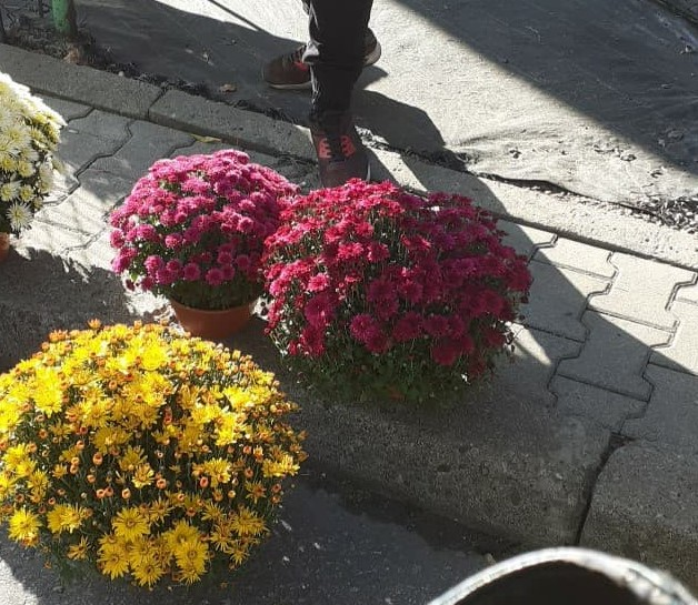 Handel zniczami i kwiatami pod cmentarzem