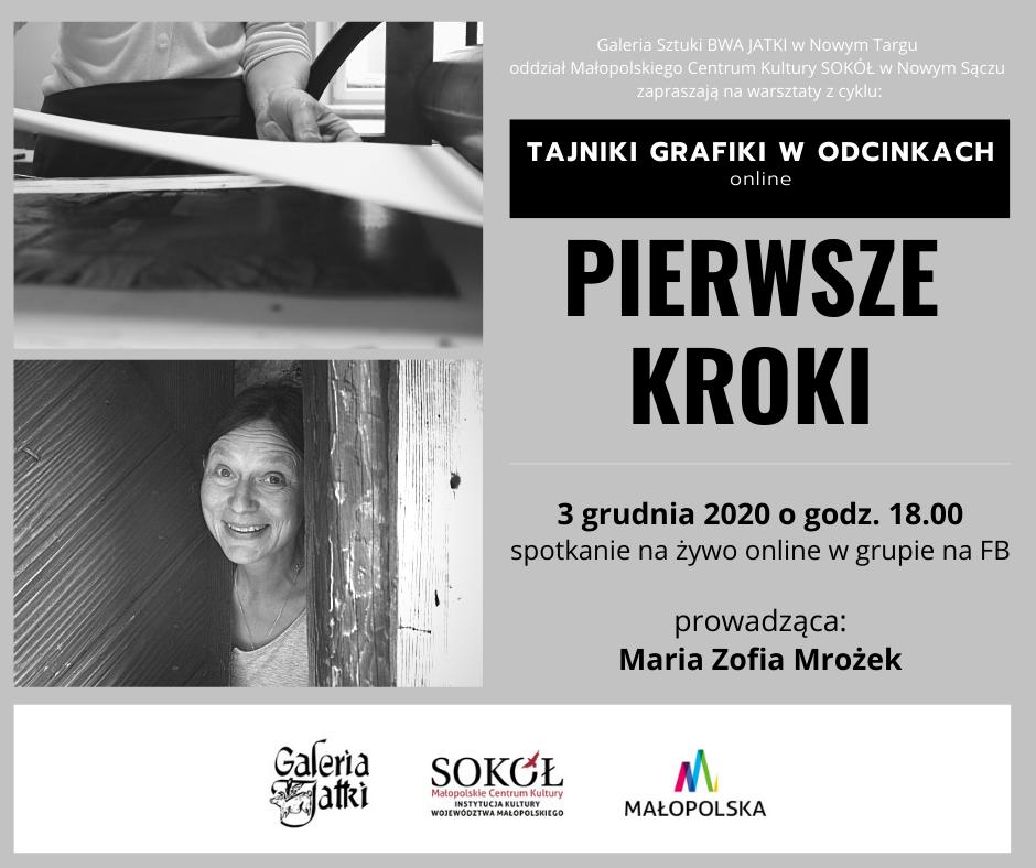Warsztaty plastyczne z Marią Zofią Mrożek - online