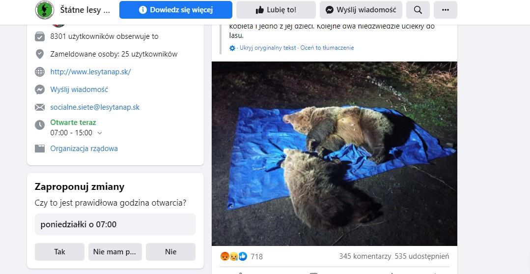 Słowacy zastrzelili w Tatrach niedźwiedzicę z młodym