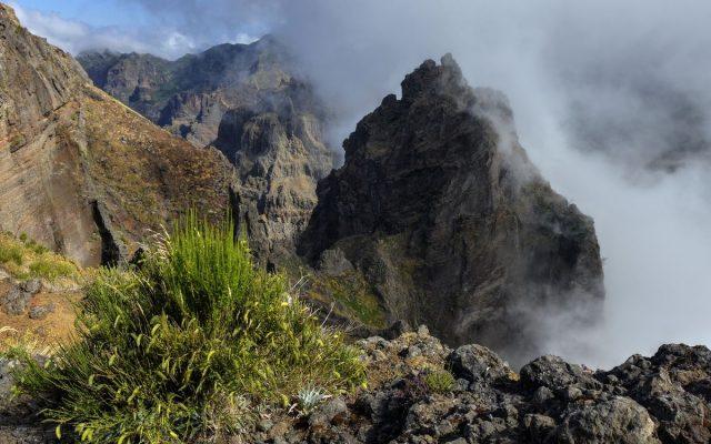 Madeira-1.jpg